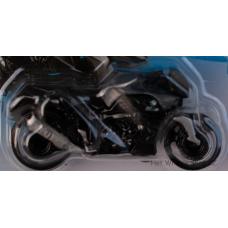 #65 BMW K 1300 R